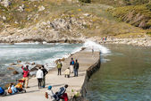Cies 群岛自然公园加利西亚 — 图库照片