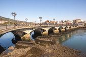 понте де бурго мост, понтеведра, галисия — Стоковое фото