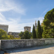 Palace of Popes, Avignon, France — Foto Stock