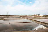 Salty evaporation ponds in Aveiro, Portugal — Foto Stock