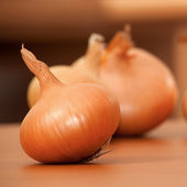 Onion, garlic — Stock Photo