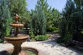 公园喷泉 — 图库照片