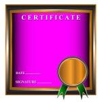 New certificate — Stock Vector