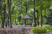 Peaceful park in summer — Stock Photo