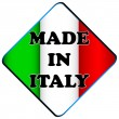 Made in italy logo — Stock Vector