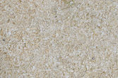 Background of sawdust — Stock Photo