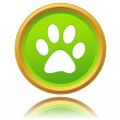 Paw of an animal icon — Stock Vector #42280925