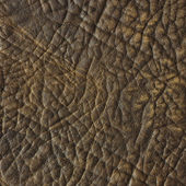 Brown leather texture closeup. Useful as background for design w — Stock Photo