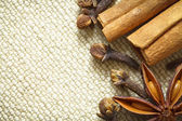 Christmas spices cinnamon and anise — Stock Photo
