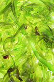 Seaweed Salad for background — Stock Photo