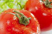 Wet tomato detail — Stock Photo
