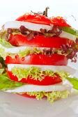 Delicious fresh Caprese Salad — Stock Photo