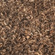 Background wood chippings — Stock Photo #41912605