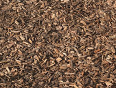Background wood chippings — Stock Photo