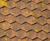 Roof tiles with moss — Stock Photo