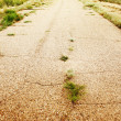 Stock Photo: Old asphalted thrown road