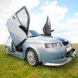 Sports car in the field — Stock Photo