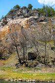 High rock on river bank — Stock fotografie