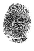 Fingerprint on white background — Stock Photo