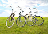 Four bicycles on meadow — Stock Photo