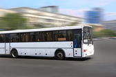 White city bus — Stock Photo