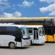 Buses on parking — Stock Photo