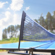 Tennis table — Stock Photo #35203511