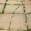 Old sidewalk from big cobble-stones — Stock Photo #35837465