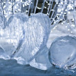 Ice hearts on snow — Stock Photo