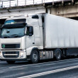 Truck moves on the highway — Stock Photo