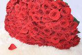 Rosas vermelhas — Foto Stock