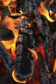 Brightly burning firewood — Stock Photo