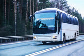 Bus moves on the country highway — Stock Photo
