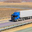 Truck moves on highway — Stock Photo #46026139