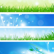Summer Nature Banners — Stock Photo