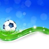 サッカー ボールの草の上 — ストック写真