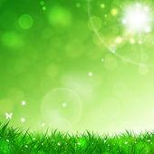 Summer Green Background — Stock Photo
