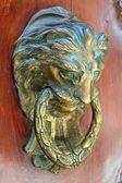 Door handle lion head — Stock Photo