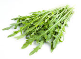 Arugula. Heap of ruccola leaves — Stock Photo