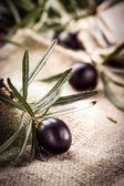 Black olive with leaves. Organic food — Stock Photo