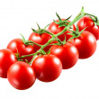Cherry tomatoes on branch. With clipping path — Stock Photo