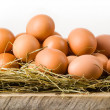 Chicken eggs in hay nest. Isolated on white. Organic food — Stock Photo