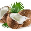 Coconuts with milk splash and leaf on white background — Stock Photo #39566801