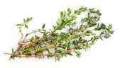 Fresh thyme on white background — Stock Photo