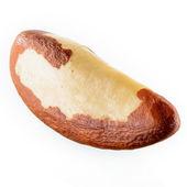 Brazil nut isolated on white background — Stock Photo