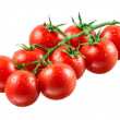 Cherry tomatoes with drops on branch. — Stock Photo