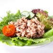 Stock Photo: Canned tuna