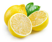 Lemon. Fruits with leaves isolated on white — Stock Photo