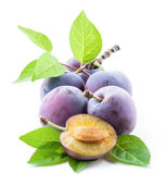 Plums and a half with leaves — Stock Photo