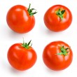 Tomato isolated on white. Collection — Stock Photo
